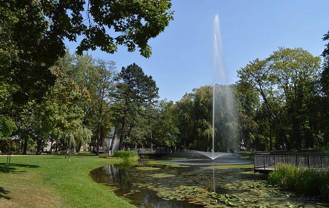 Seks w Częstochowie - park Staszica